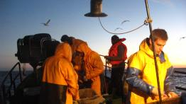 Seabird Task Force observers on board gillnet vessels © Marguerite Tarzia/BirdLife International