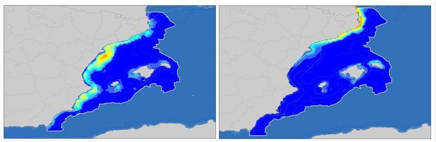 Principales areas de alimentación para la pardela balear (izquierda) y la pardela mediterránea (derecha) en aguas del Mediterráneo español durante la época reproductora. Del azul al rojo, pasando por el Amarillo, se indica las areas de menos a más atractivas para estas pardelas. Fuente: SEO/BirdLife.