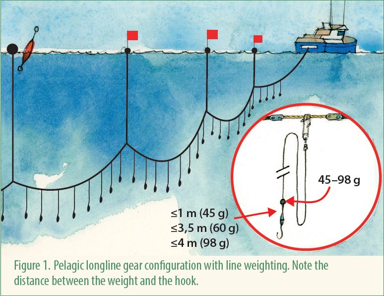 Example of pelagic longline configuration.  Bycatch mitigation factsheet 8. BirdLife